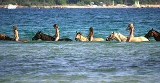 Baignade à cheval à Porto Vecchio
