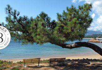 Découvrez les plages de Cala Rossa