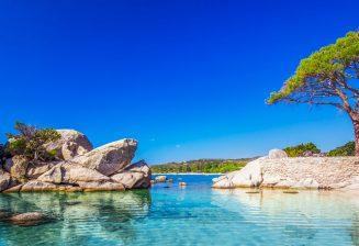 Palombaggia en téte des plus belles plages de France